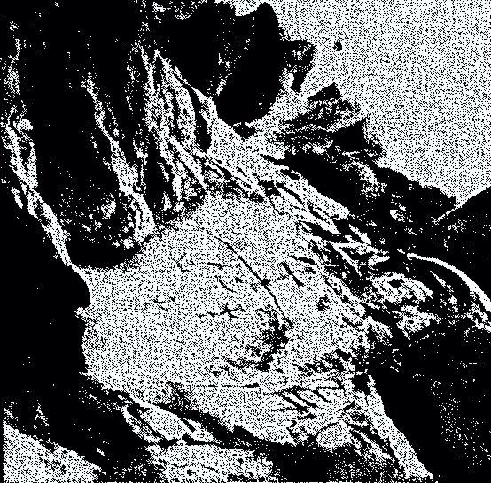 Οι σταυροί αυτοί, οι οποίοι ανακαλύφτηκαν σε ύψος πολλών χιλιάδων μέτρων στο Αραράτ, προσέλκυσαν το ενδιαφέρον των αρχαιολόγων, διότι αποδείχτηκε ότι έγιναν το 2.000 π.Χ.