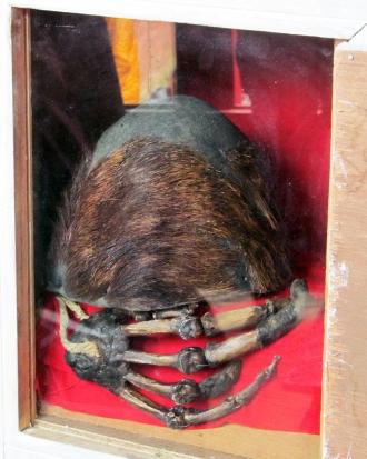 Το θεωρούμενο ως το δέρμα και το χέρι του Γέτι, όπως εκτίθενται για προσκύνημα στο μοναστήρι του Παγκμπότσε
