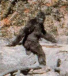 Η πιο γνωστή φωτογραφία του Σάσκουατς, στις 20/10/1967