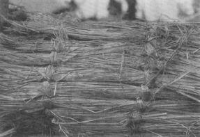 Το αχυρένιο στρώμα που χώριζε τα δύο τμήματα της σαρκοφάγου
