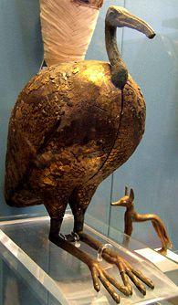 Μουμιοποιημένη ίβιδα
