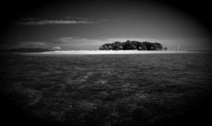 Α.Τ.Ι.Α. πάνω από τα Φίτζι…