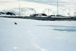 """Η Χιλιανή βάση της Ανταρκτικής, """"Αρτούρο Πρατ"""", 1957"""