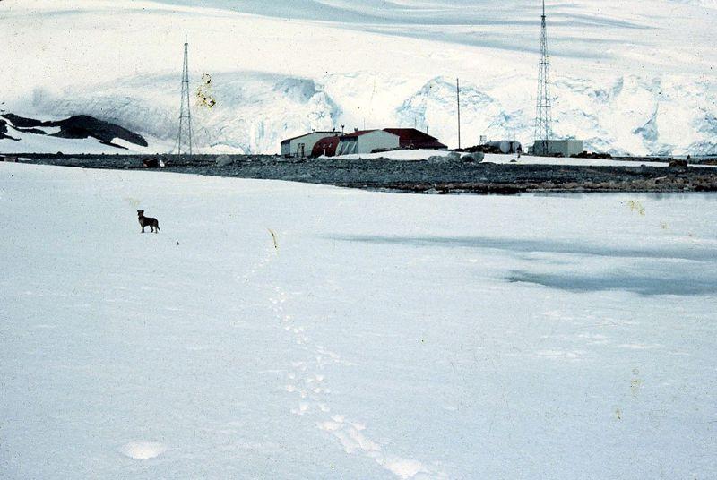 Α.Τ.Ι.Α. πάνω από την Ανταρκτική…