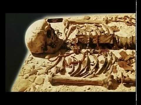 Ο σκελετός της Τιν Χινάν, Μουσείο Αλγερίου