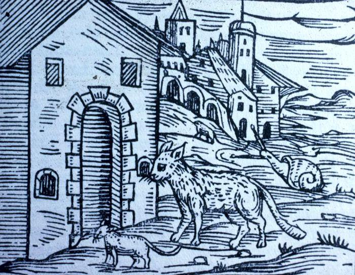 Μάγισσες μεταμορφωμένες σε ζώα, κάνοντας ξόρκια έξω από σπίτια (γκραβούρα εποχής)