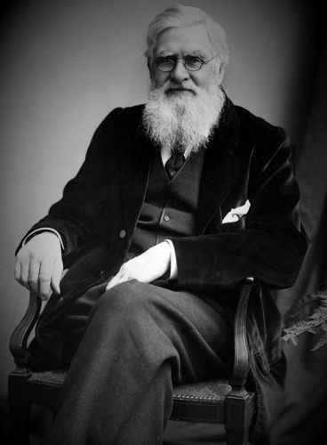 Alfred Russel Wallace (08/01/1823 - 07/11/1913)