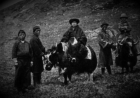 Η Alexandra David-Neel επάνω σ'ένα γιακ, στο Θιβέτ