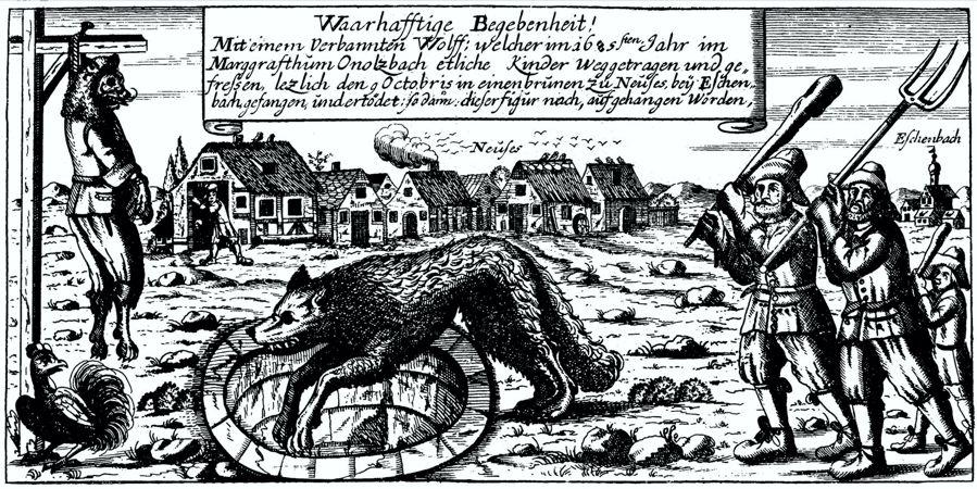 Ο Λύκος του Ansbach, στη Βαυαρία. Το πλάσμα αυτό σκότωσε ένα μεγάλο αριθμό ανθρώπων στην επαρχία του Ansbach, το 1685