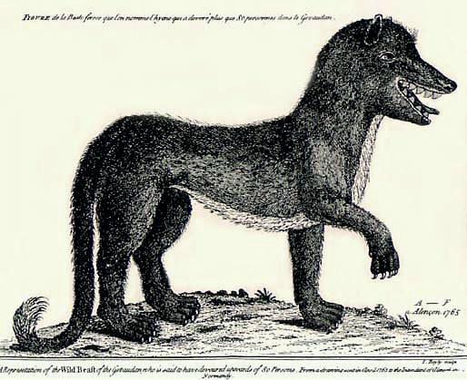 Το Θηρίο της Ζεβοντάν, γκραβούρα του 18ου αιώνα