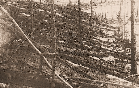 Τουγκούσκα, 1908