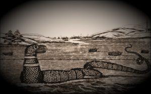 Το παράξενο πλάσμα που ξεβράστηκε στις ακτές της Μασαχουσέτης, το 1970...
