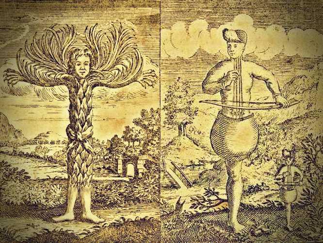 Φυτάνθρωπος και Κιθαράνθρωπος, από το βιβλίο του Ludvig Holberg