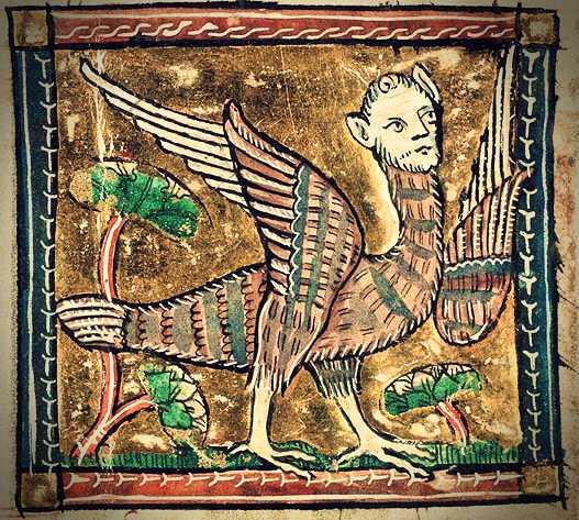 Μεσαιωνική απεικόνιση Άρπυιας