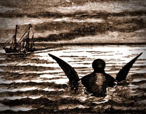 """Γκραβούρα εποχής, στην οποία απεικονίζεται το κεφάλι του θαλάσσιου τέρατος, που θεάθηκε από το πλήρωμα της αγγλικής βασιλικής θαλαμηγού """"Osborne"""""""