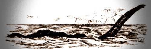 """Το θαλάσσιο ερπετό, όπως το περιέγραψε ο Κυβερνήτης Cringle του αγγλικού ατμόπλοιου """"Umfuli"""""""