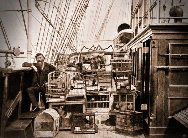 """Ο Λόρδος Crawford (28/07/1847 - 31/01/1913), στη θαλαμηγό του """"Valhalla"""""""
