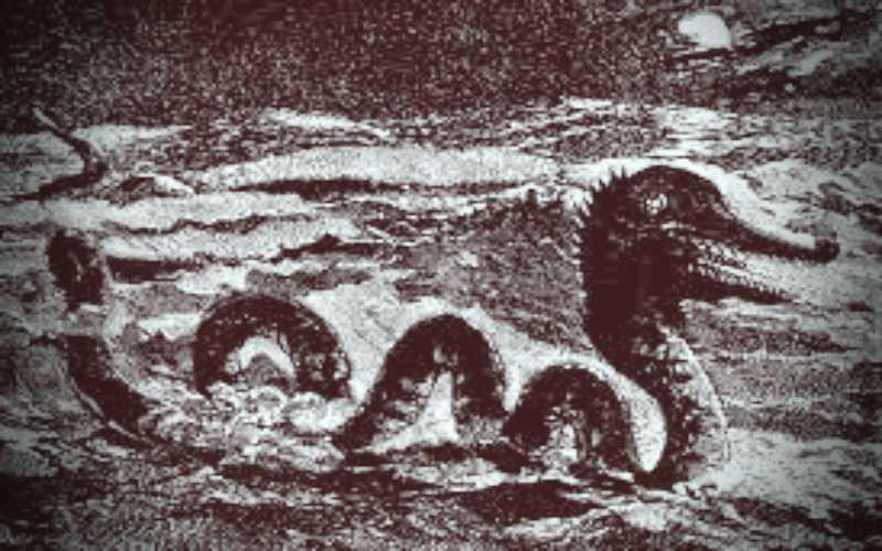 Θαλάσσιο τέρας στην Αυστραλία, το 1930…