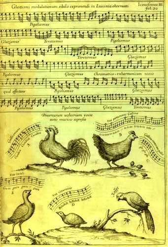 Γκραβούρα από έργο του Athanasius Kircher, που απεικονίζει το πείραμα με τις όρνιθες