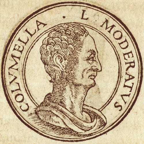 Lucius Columella (4 - 70 μ.Χ.)
