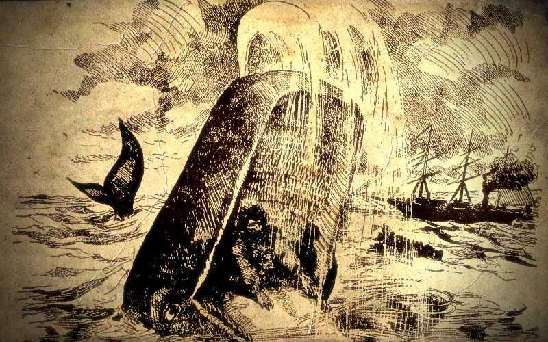 Ένας νέος Ιωνάς – Η απίστευτη περιπέτεια του ναύτη James Bartley…
