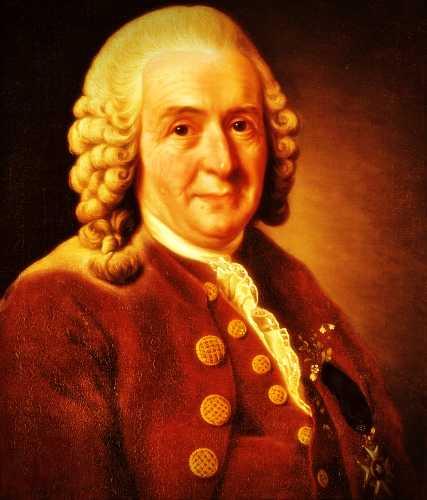 Carl Linnaeus (23/05/1707 - 10/01/1778)