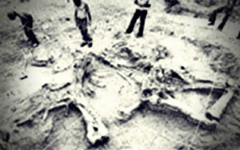 Τα λίθινα εργαλεία ηλικίας 2,5 εκ. χρόνων που βρέθηκαν στην Εορδαία, το 1977...