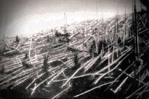 Φωτογραφία από την αποστολή του 1927, στην οποία διακρίνονται τα χτυπημένα από το ωστικό κύμα της έκρηξης δέντρα