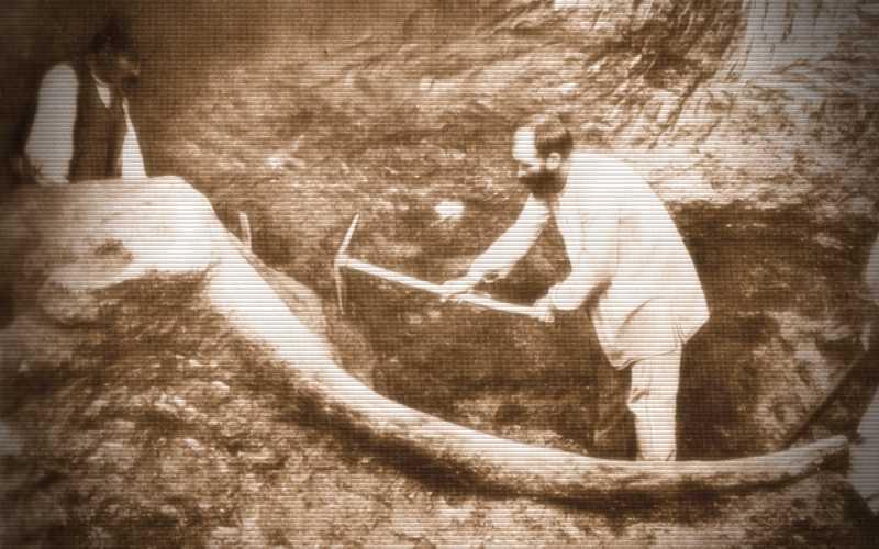 Τα περίφημα παλαιοντολογικά ευρήματα των ανασκαφών της Μεγαλόπολης, το 1902…