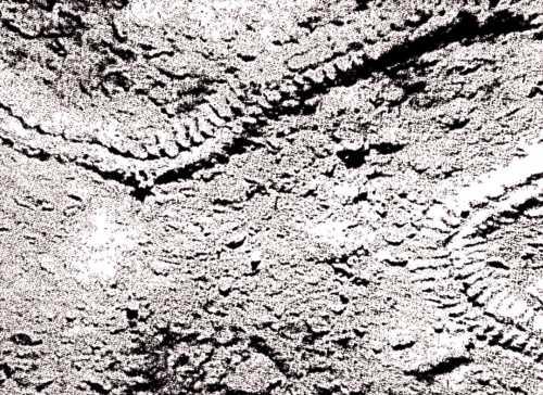 Μία από τις φωτογραφίες που δημοσίευσε η Πράβντα και στην οποία απεικονίζονται τα ίχνη του άγνωστου πλάσματος